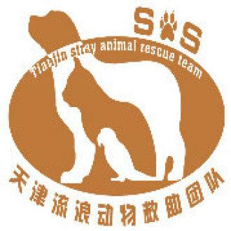天津流浪动物救助团队