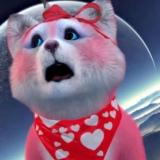 太空上的大波熊的头像
