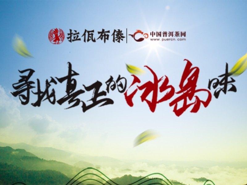 中国普洱茶网直播正在直播
