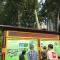 #华小商直播# 西安人一到夏天就吃杨树毛,这次我们要看看如何给杨树绝育。