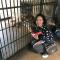 #直播高温下的武汉#猴子啃西瓜、老虎抱冰块、羊驼爱冲凉,动物们怎样过夏天?一起来看看吧!