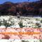 扶贫攻坚中的感动:南胡哈 美丽的山谷更美丽