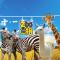 #长颈鹿# #斑马# #羊驼#草食三萌兽的中二日常 #大连森林动物园#