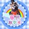 萌熊🐻苏小雨