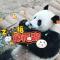正月十五滚滚吃元宵啦 #大连森林动物园#  #大熊猫金虎#