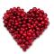 蔓赿莓原料创新运用研讨会
