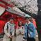 快来和发现君一起在@LUMINE_EST新宿 屋顶赏樱花夜景~#樱花前线# #带着微博赏樱花# #日本攻略#