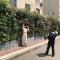 400米蔷薇花墙,西安一小区围墙外,20年才培育出400多米的蔷薇花墙惹人爱。