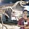 国际博物馆日:用眼睛去解读十堰历史
