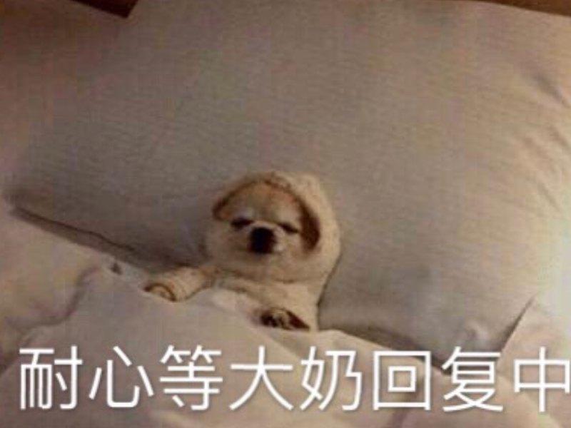 Yizhoubaby_正在直播