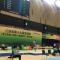 江苏省第十九届运动会青少年部体操比赛正在...