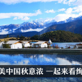 中国新闻网的头像