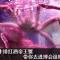 #小新在直播#【牛排红酒帝王蟹!走,去进博会逛吃逛吃~[色]】