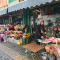 过年了 买些花儿带回家 华商主播带你逛花卉市场