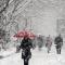 """下雪是对冬天起码的尊重——这次终于不是""""贫雪"""""""