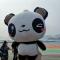 #融融观瑜#  #融融来了# 高雄市长韩国瑜参访厦门国际游轮母港