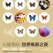 它世界公益自然分享会 蝴蝶专家李宇飞老师带你认识会飞的花