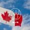 (英文课程)跟杜慕康老师一起了解一下加拿大葡萄酒的多样性吧!