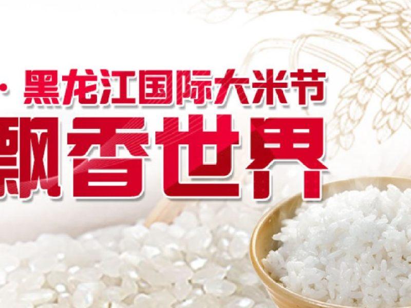黑龙江日报正在直播