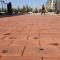 大学内的星光大道 西安一大学校园内5000块地砖刻满校友名字