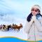 来到呼伦贝尔的白音哈达,进蒙古包教你熬奶茶!/相逢就是缘分 #李旅神#