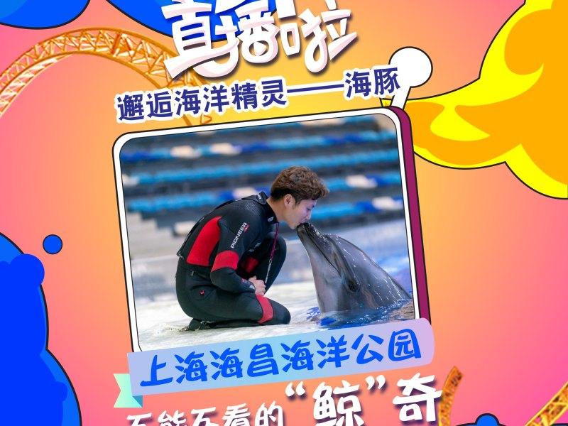 上海海昌海洋公園正在直播