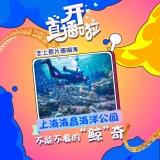 上海海昌海洋公園的頭像