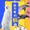 上海海昌海洋公園,小企鵝出游記!