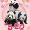 520告白大熊猫三宝