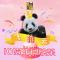 大熊猫飞云10岁生日会