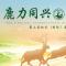 """第三届北京(国际)麋鹿文化大会—""""云游""""麋鹿苑"""