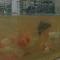 4个巨型玻璃鱼缸吸引游人 长安中央公园即将开放