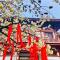 樱花开放能有多美?西安青龙寺早樱盛开 快来看看吧#春天来看花#
