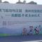 假期出游好去处,去秦岭野生动物园看和美朱鹮飞临动物王国