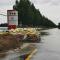 直击渭南大荔县赵渡镇汛情  累计受灾23.9万人,49.1万亩农田被淹